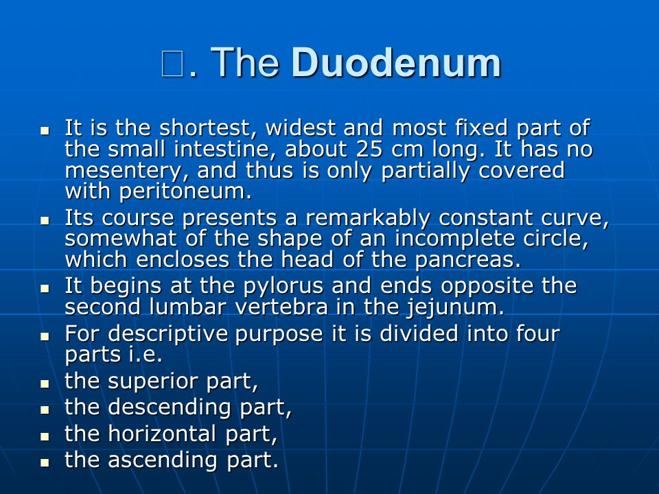 Ⅰ. The Duodenum