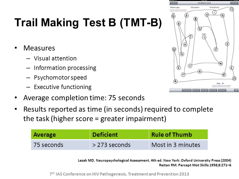 Trail Making Test B (TMT-B)