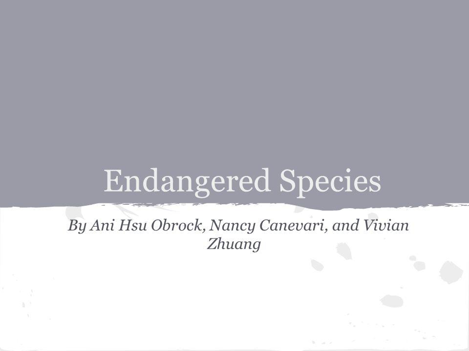 By Ani Hsu Obrock, Nancy Canevari, and Vivian Zhuang