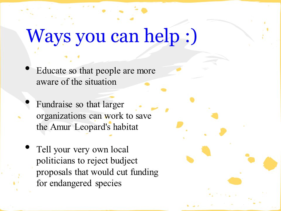 Ways you can help :) Educate so that people are more aware of the situation.