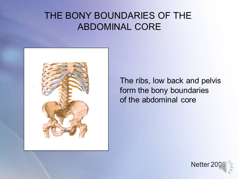 THE BONY BOUNDARIES OF THE ABDOMINAL CORE
