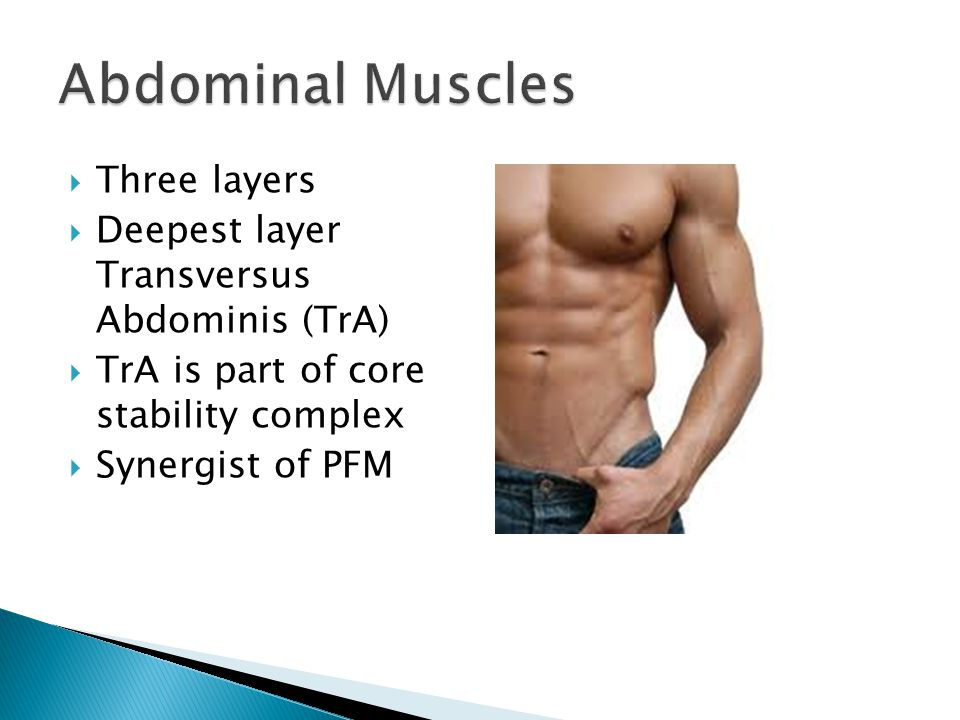 Abdominal Muscles Three layers