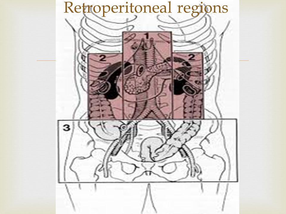 Retroperitoneal regions