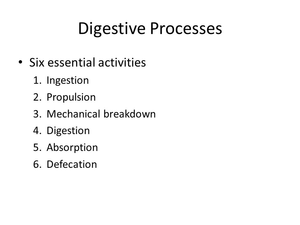 Digestive Processes Six essential activities Ingestion Propulsion