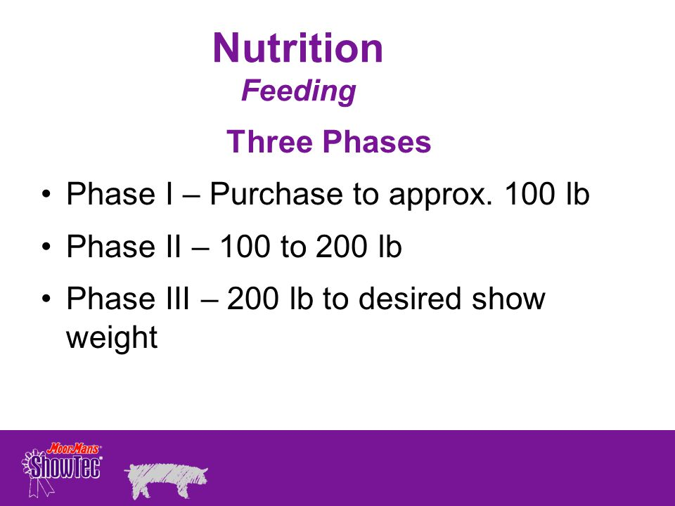 Nutrition Feeding Three Phases Phase I – Purchase to approx. 100 lb
