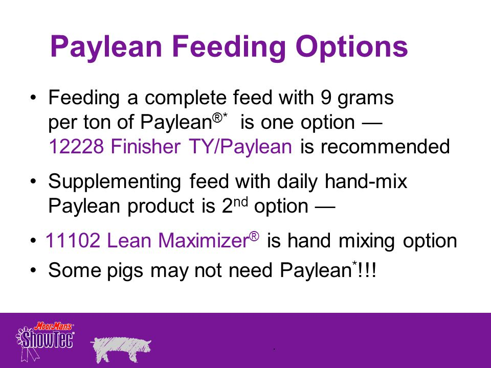 Paylean Feeding Options