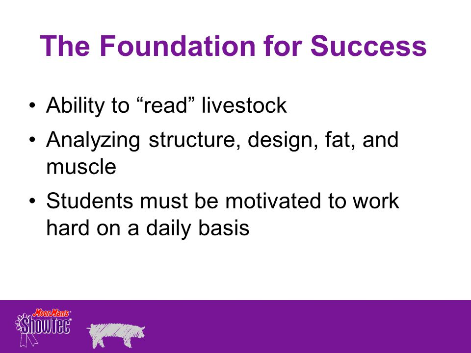 The Foundation for Success