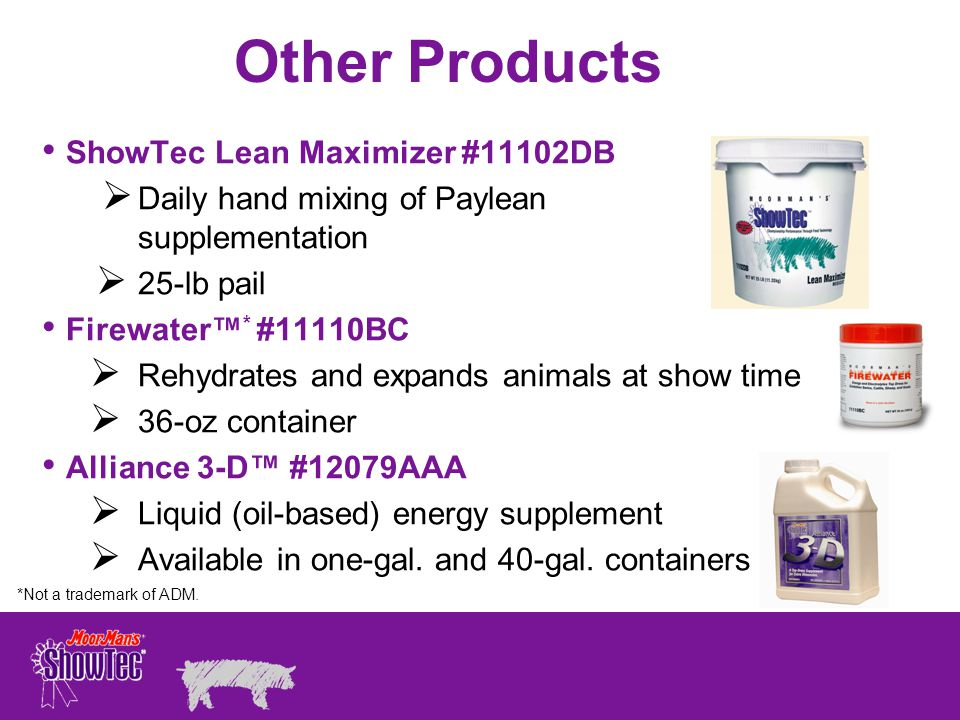 Other Products ShowTec Lean Maximizer #11102DB