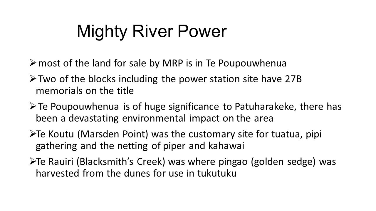 Mighty River Power most of the land for sale by MRP is in Te Poupouwhenua.
