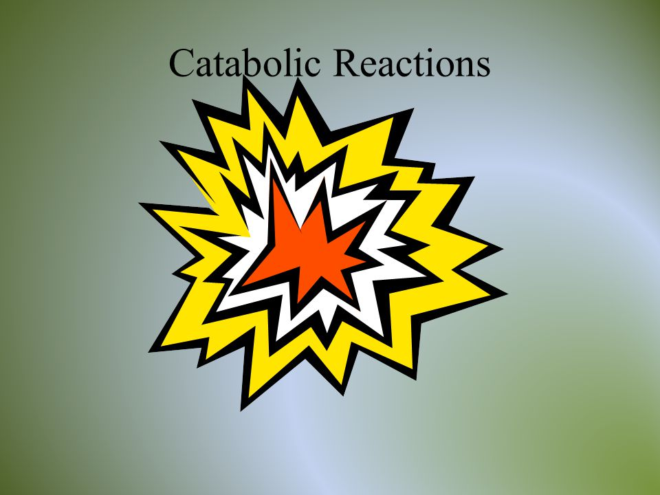 Catabolic Reactions
