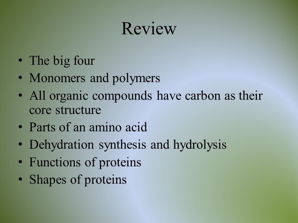 Review The big four Monomers and polymers