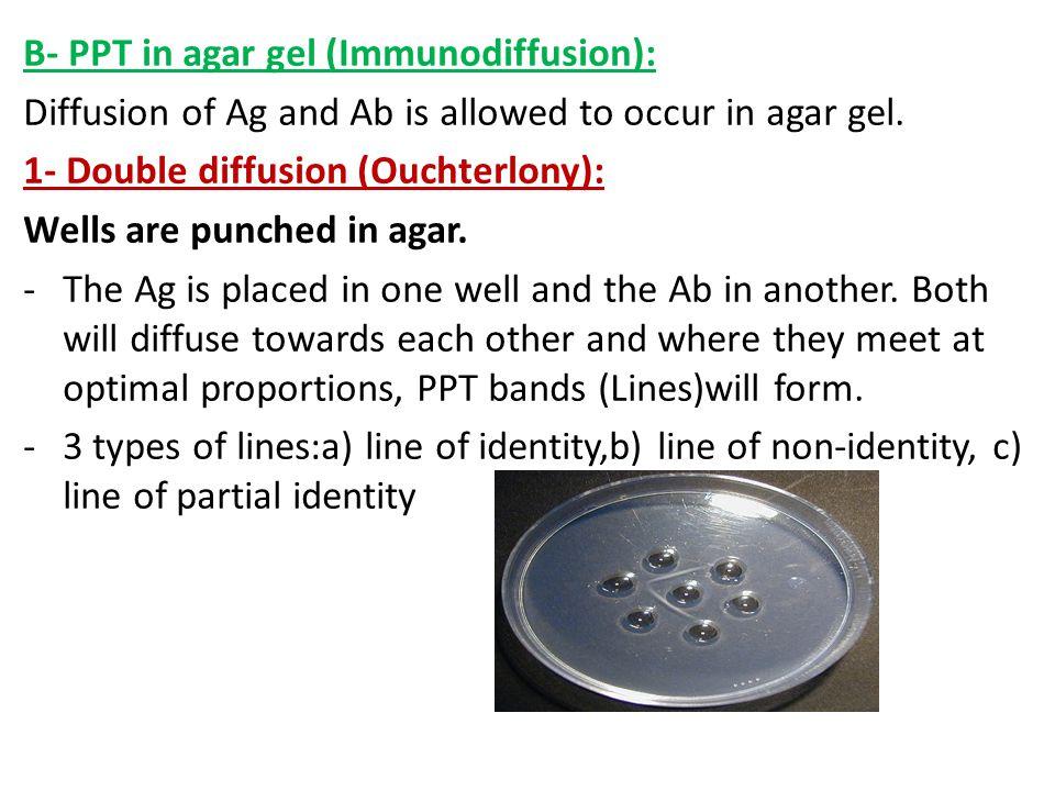 B- PPT in agar gel (Immunodiffusion):