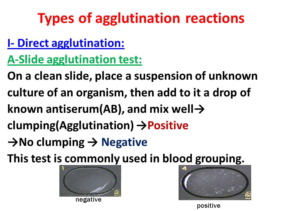 Types of agglutination reactions