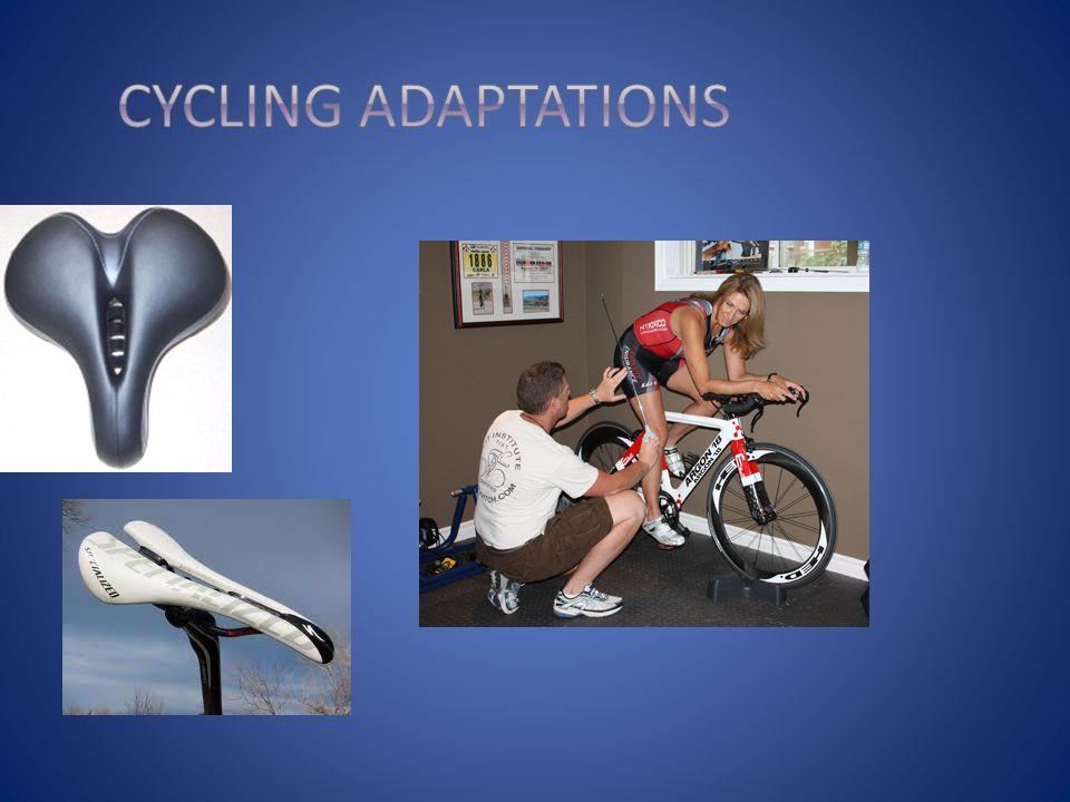Cycling adaptations