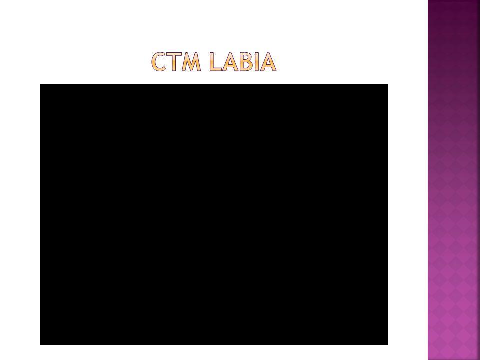 CTM Labia