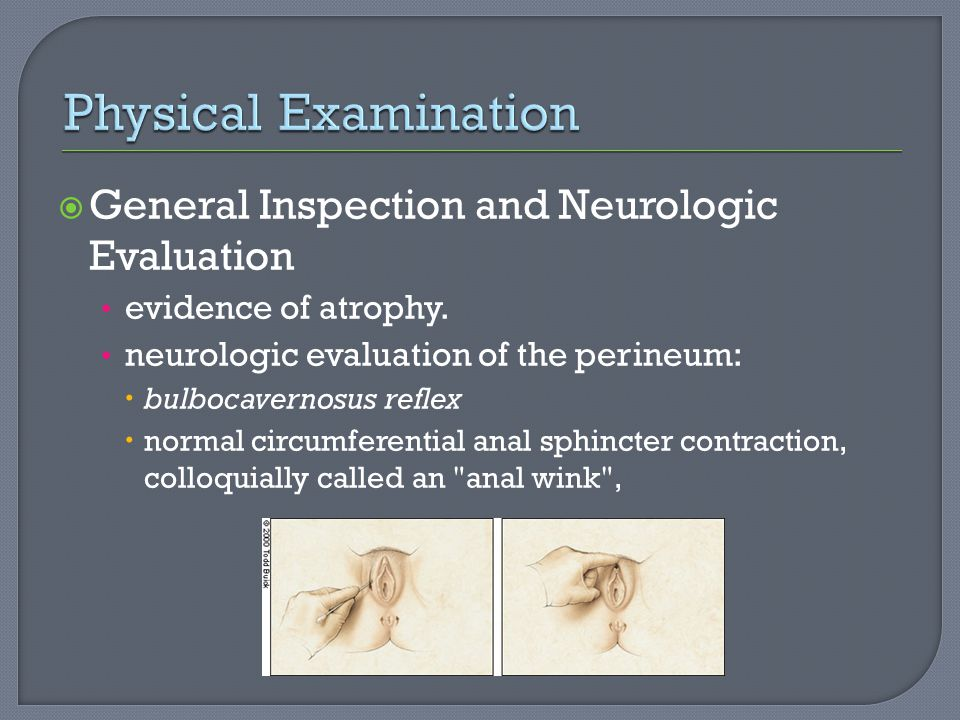 Physical Examination General Inspection and Neurologic Evaluation