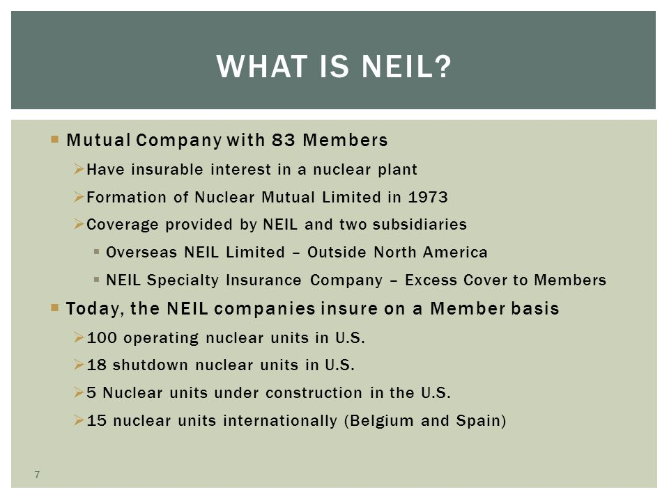 What is NEIL Mutual Company with 83 Members