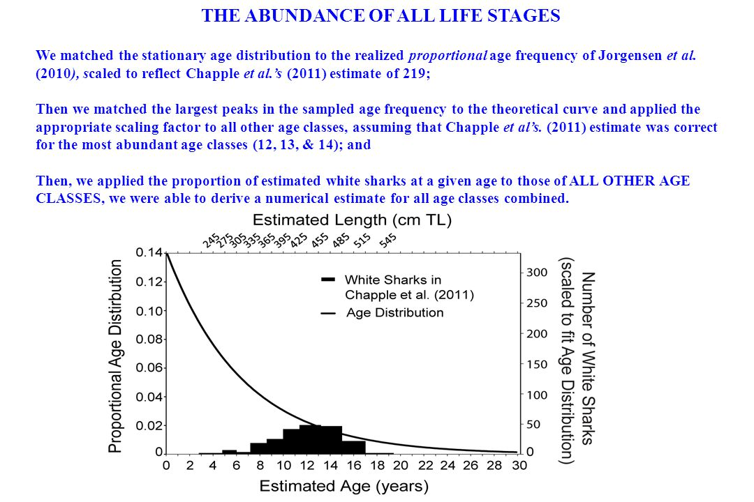 THE ABUNDANCE OF ALL LIFE STAGES