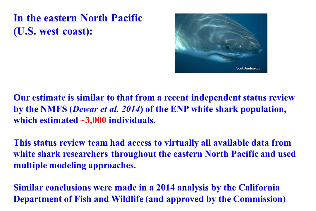 In the eastern North Pacific (U.S. west coast):