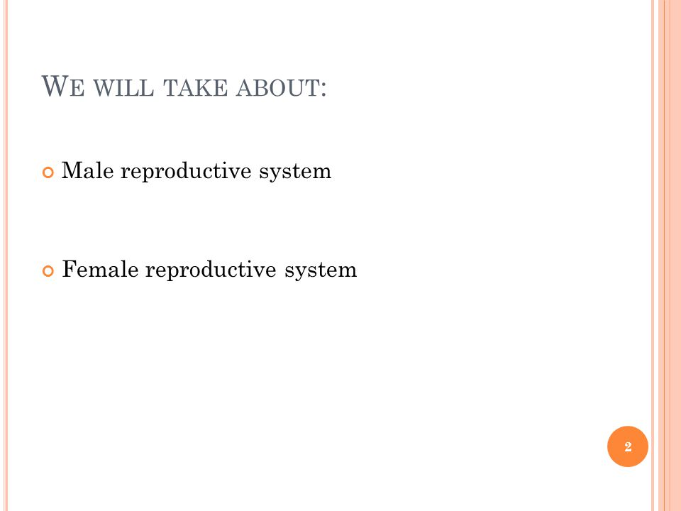 We will take about: Male reproductive system