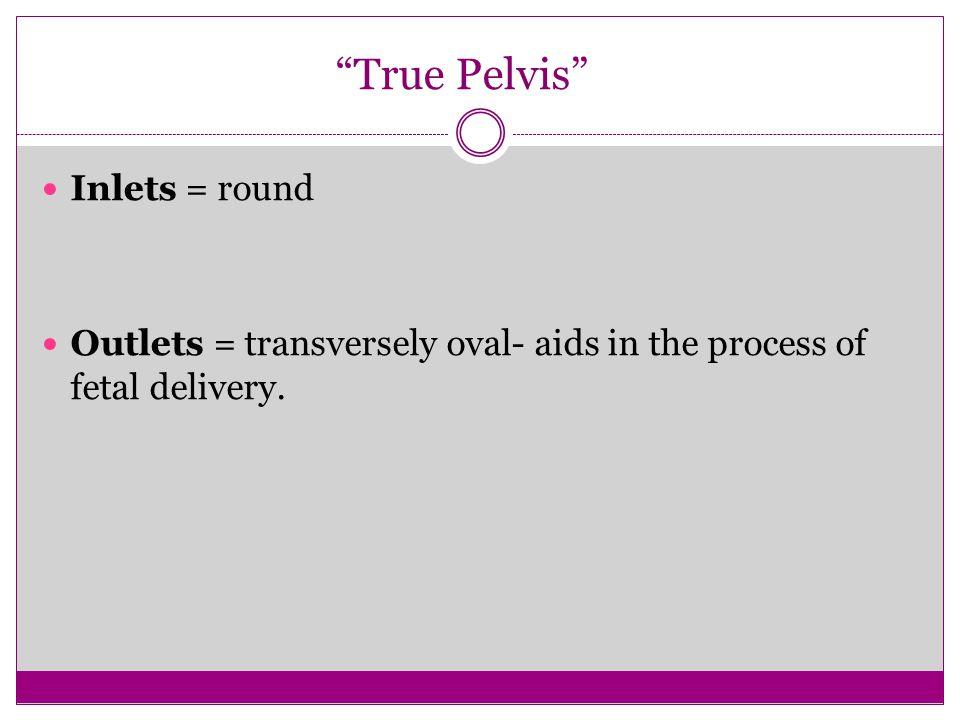 True Pelvis Inlets = round