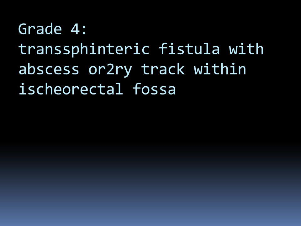 Grade 4: transsphinteric fistula with abscess or2ry track within ischeorectal fossa