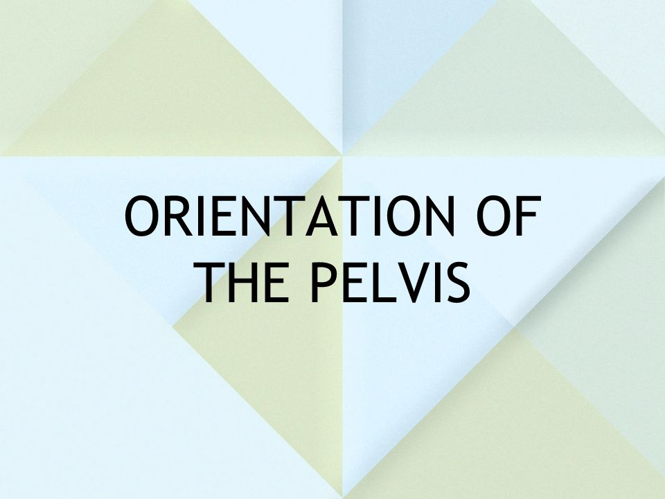 ORIENTATION OF THE PELVIS