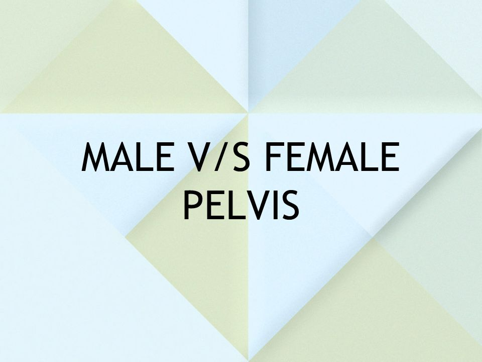 MALE V/S FEMALE PELVIS