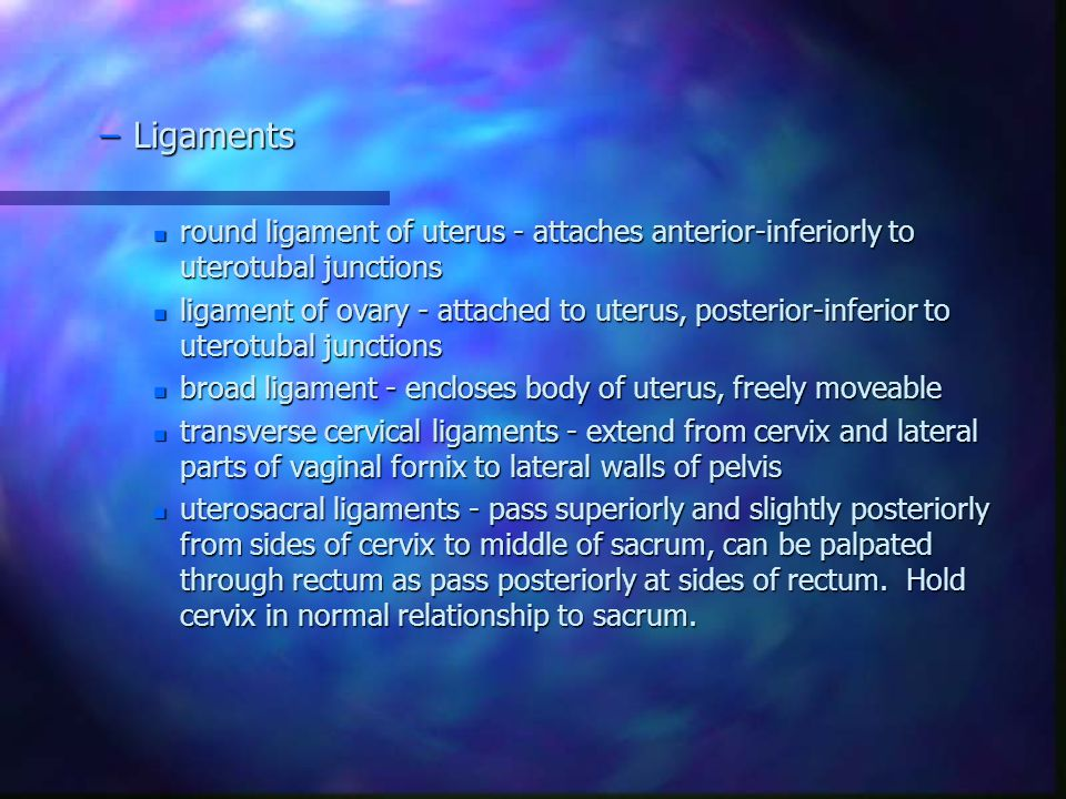 Ligaments round ligament of uterus - attaches anterior-inferiorly to uterotubal junctions.