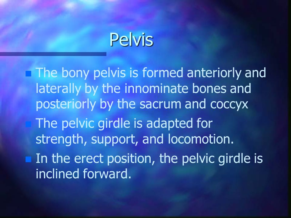 Pelvis The bony pelvis is formed anteriorly and laterally by the innominate bones and posteriorly by the sacrum and coccyx.