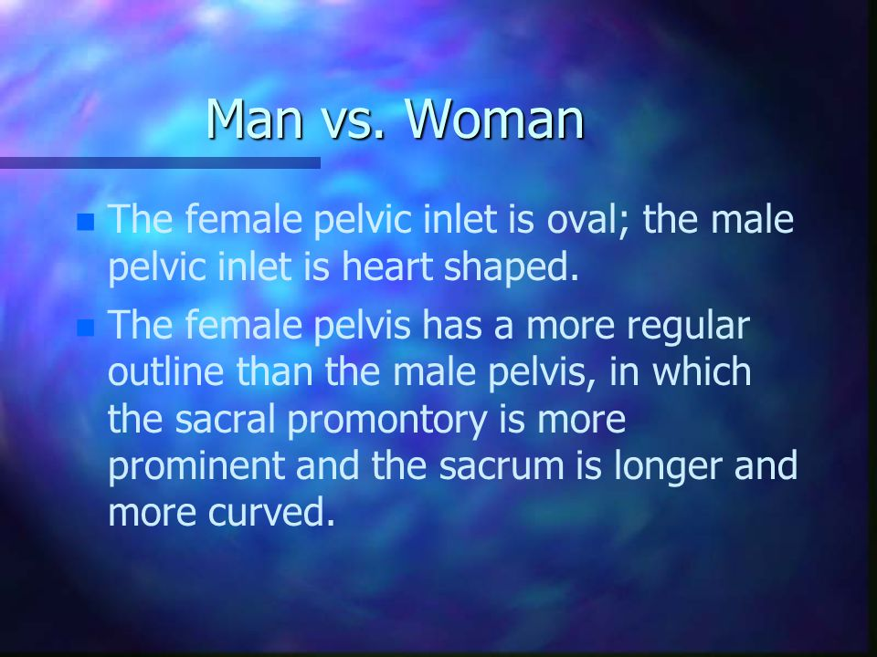 Man vs. Woman The female pelvic inlet is oval; the male pelvic inlet is heart shaped.