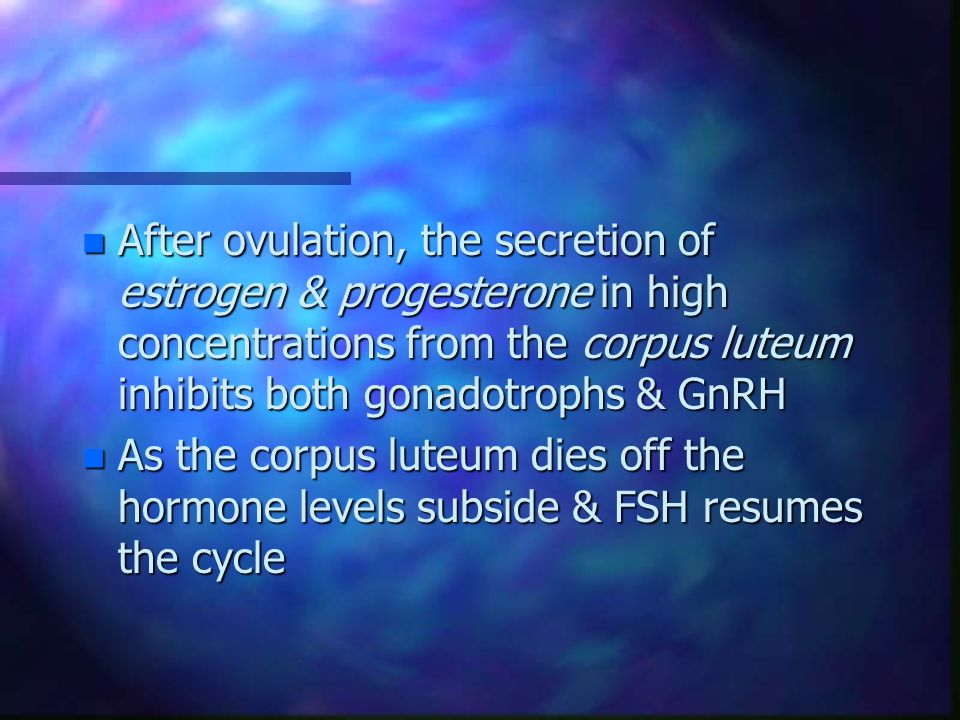 After ovulation, the secretion of estrogen & progesterone in high concentrations from the corpus luteum inhibits both gonadotrophs & GnRH