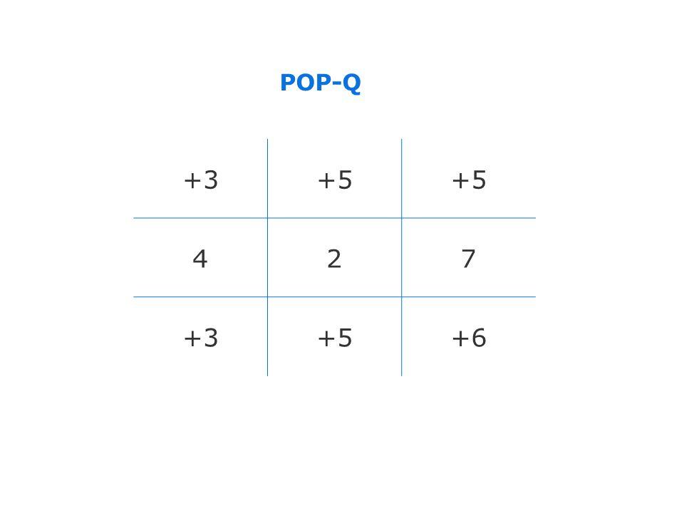POP-Q +3 +5 4 2 7 +6 版权所有