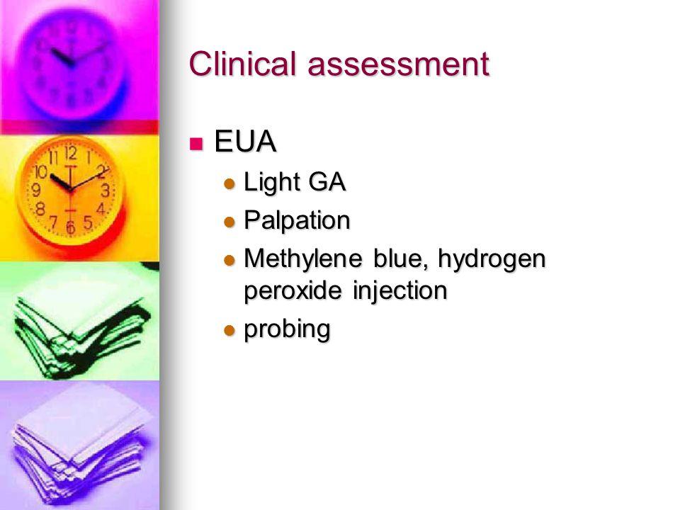 Clinical assessment EUA Light GA Palpation
