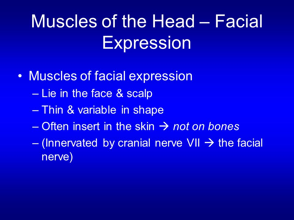 Muscles of the Head – Facial Expression