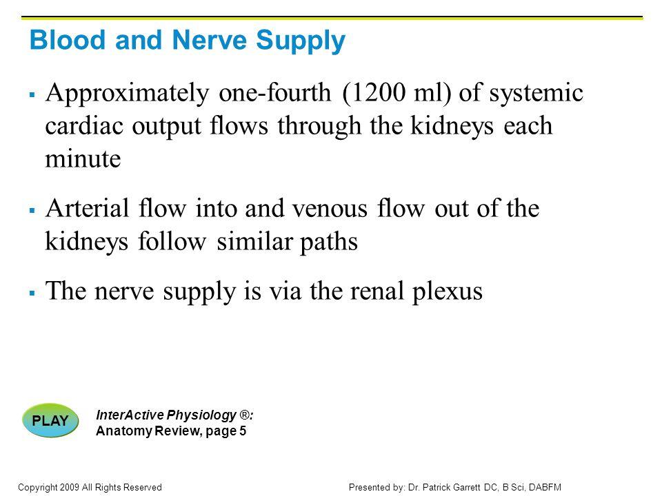 The nerve supply is via the renal plexus