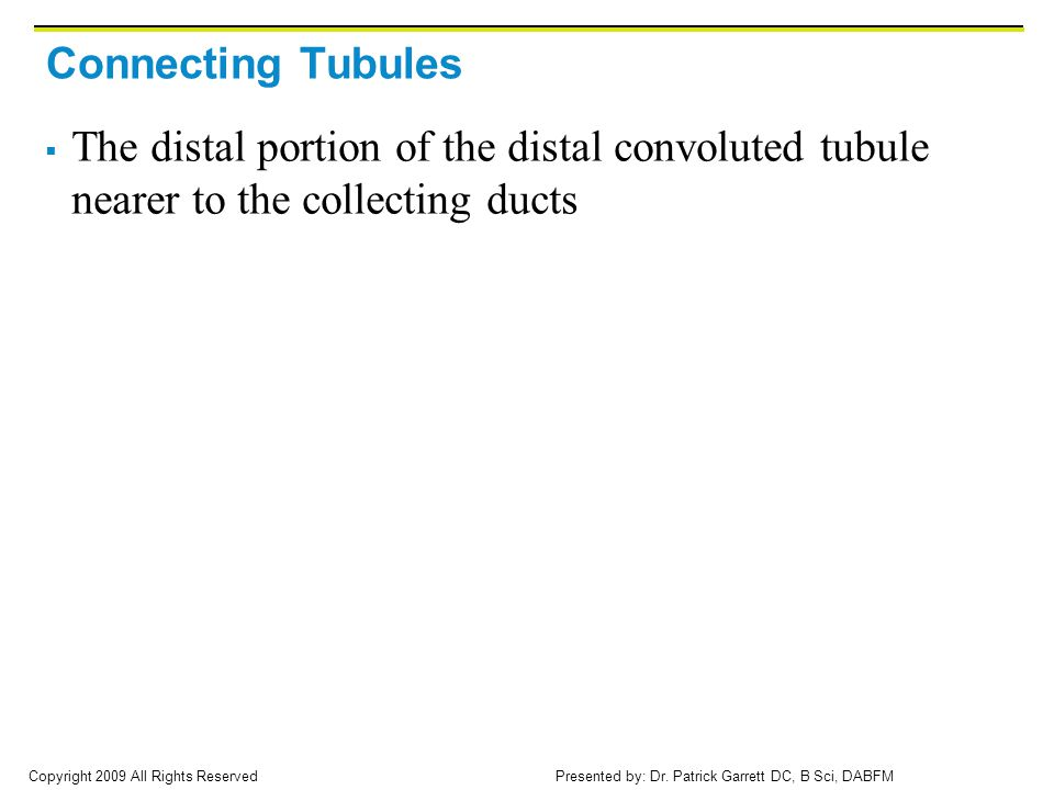 Connecting Tubules The distal portion of the distal convoluted tubule nearer to the collecting ducts.