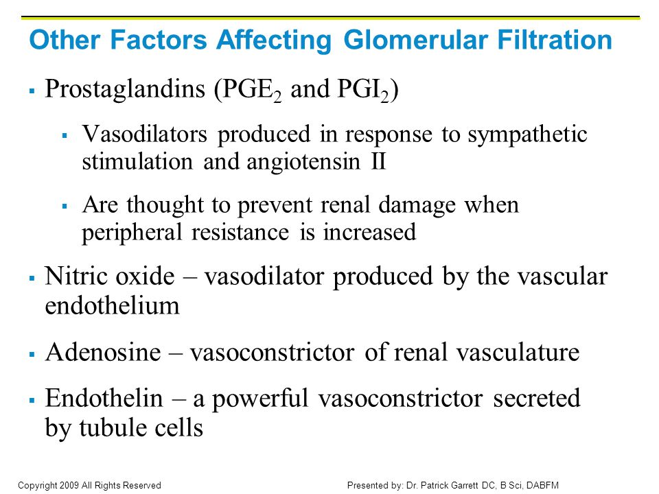 Other Factors Affecting Glomerular Filtration