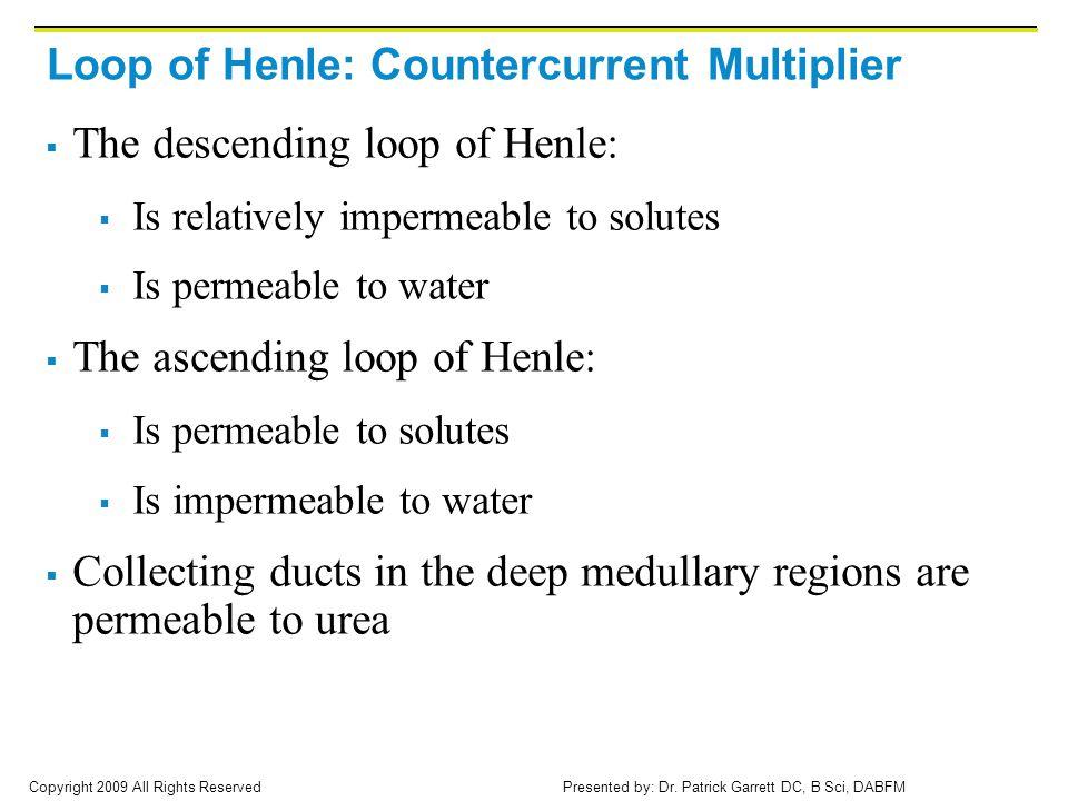 Loop of Henle: Countercurrent Multiplier