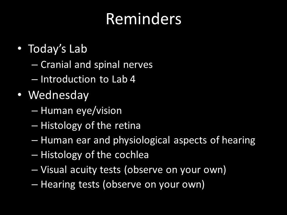Reminders Today's Lab Wednesday Cranial and spinal nerves
