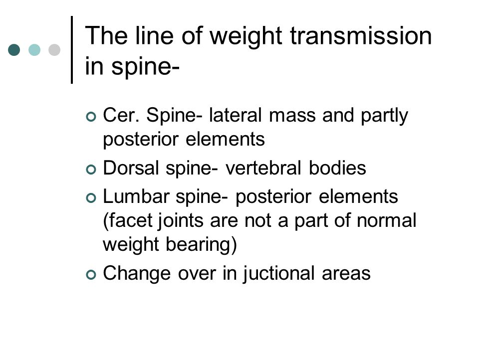 The line of weight transmission in spine-