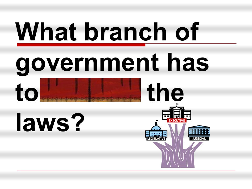 What branch of government has to execute the laws