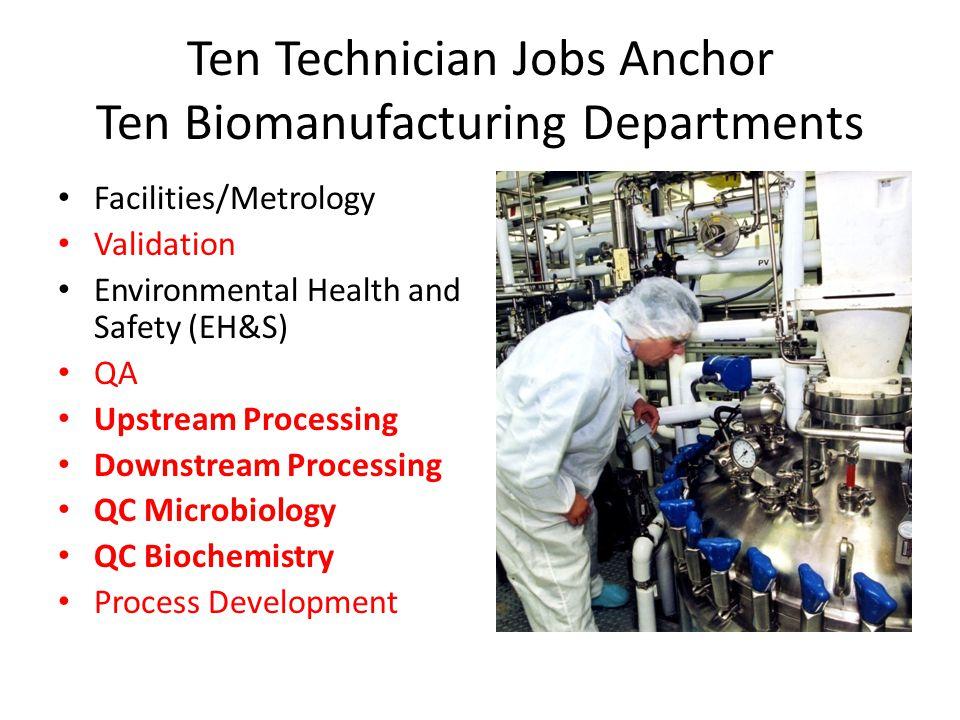 Ten Technician Jobs Anchor Ten Biomanufacturing Departments