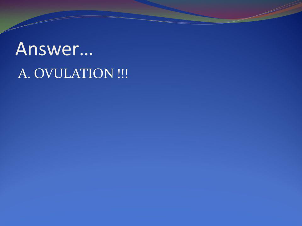 Answer… A. OVULATION !!!