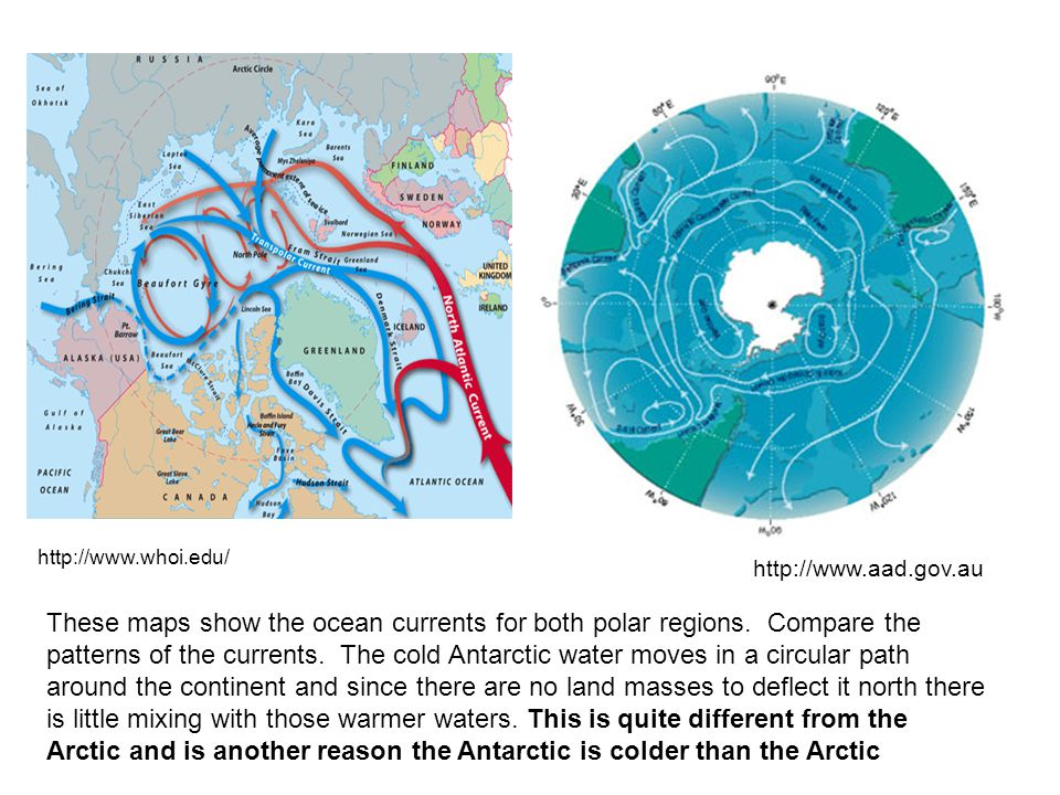 As you can see the water flows through the arctic area mixing warm with the cold. In the Antarctic area there are no land masses to restrict the circular flow of the water around the continent so there is little mixing with warmer northern waters.