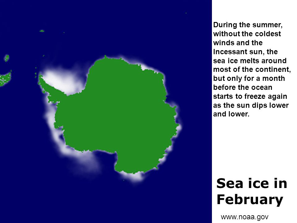 Sea ice in February During the summer, without the coldest