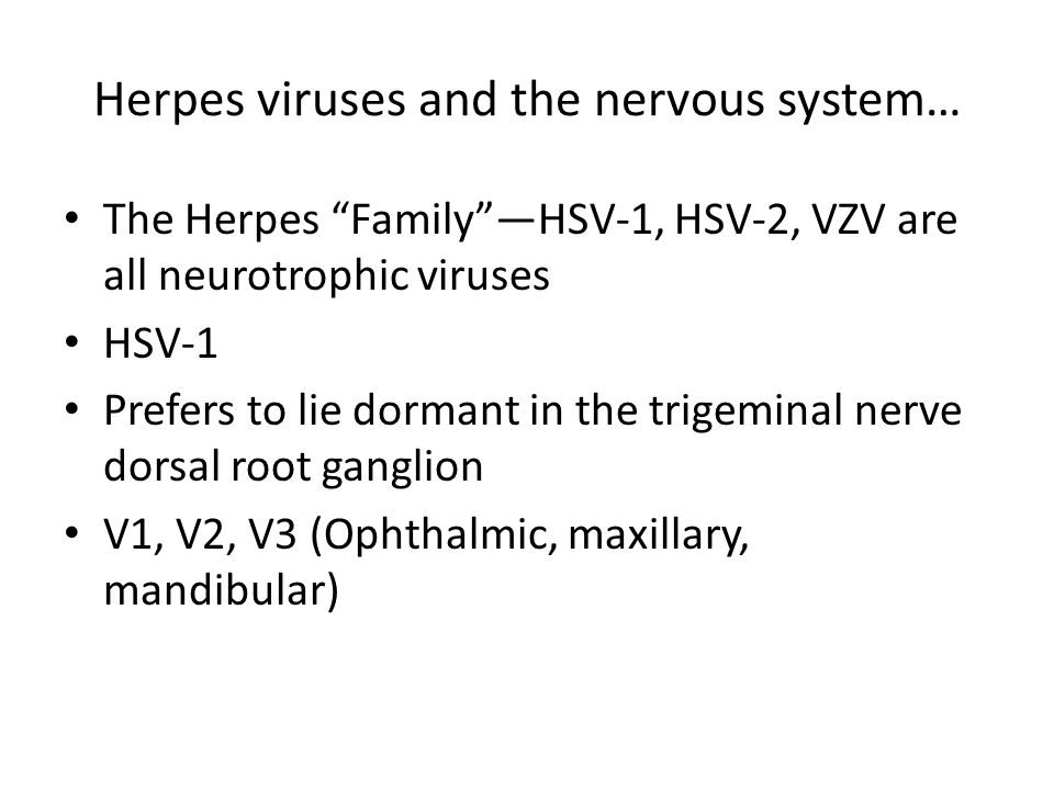 Herpes viruses and the nervous system…