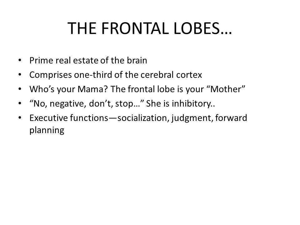 THE FRONTAL LOBES… Prime real estate of the brain