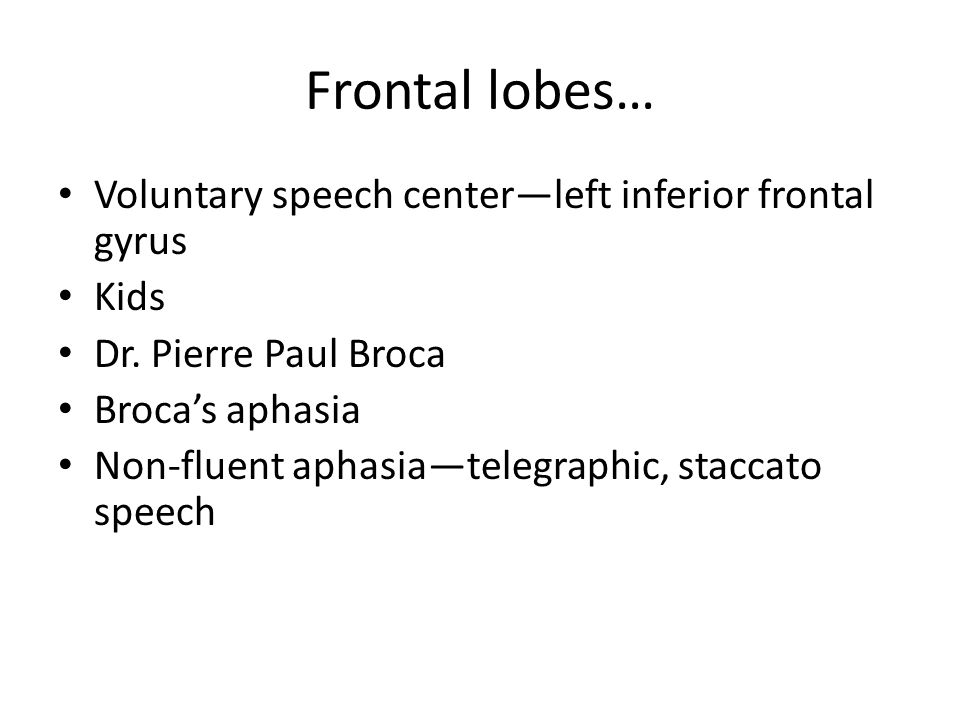 Frontal lobes… Voluntary speech center—left inferior frontal gyrus