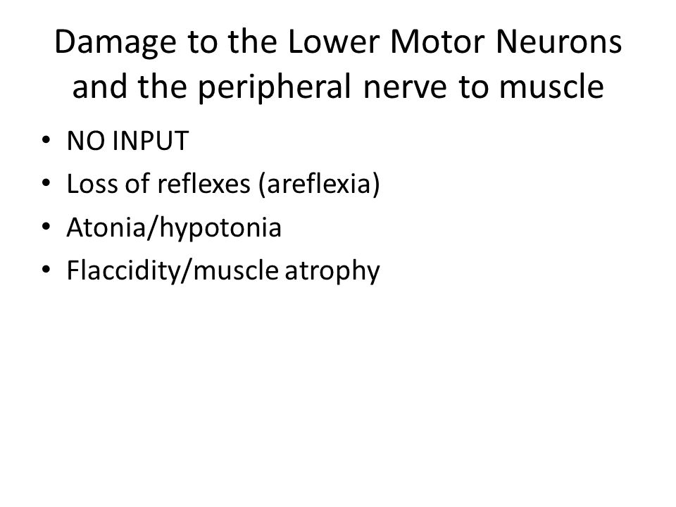 Damage to the Lower Motor Neurons and the peripheral nerve to muscle